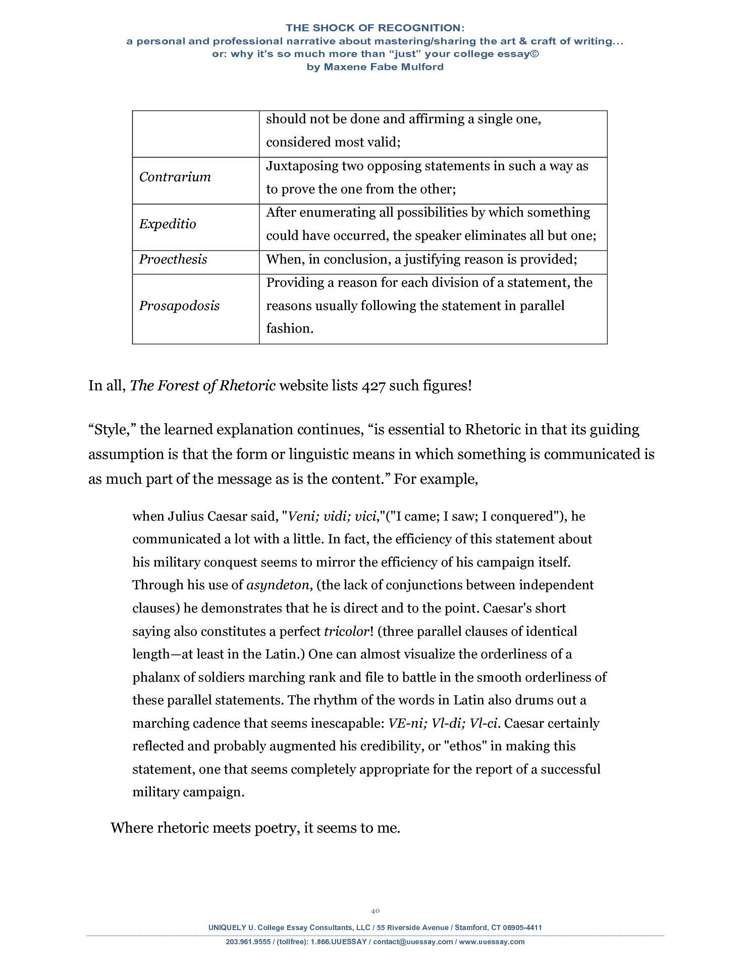 40 page essay
